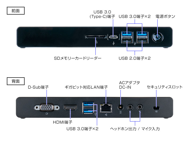 mouse CT6‐4